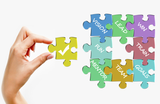 Image of puzzle piece with words Vision, lead, Plan, Team, Goals, Mentor